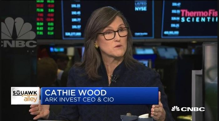 高報酬ETF打敗美國大盤:凱瑟琳伍德